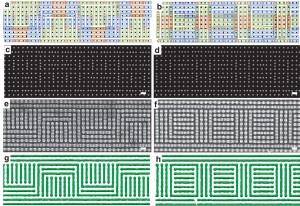 複雑なブロック共重合体パターン形成の例(Jae-Byum Chang et al., Nature Communications (2014) doi:10.1038/ncomms4305)