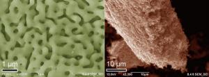 左:ナノ多孔質ニッケル上に成長した3次元ナノ多孔質グラフェン、右:ニッケルを溶かした後の3次元ナノ多孔質ナノ多孔質グラフェン単体 (出所:東北大学)