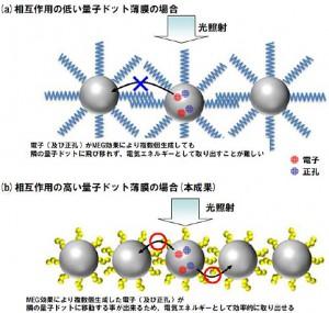 相互作用の低い量子ドット薄膜と相互作用の高い量子ドット薄膜の比較(出所:富士フイルム)