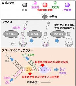 マイクロ空間で発生した短寿命中間体を活用した精密合成戦略(出所:京都大学)