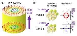 スキルミオンおよびスキルミオン格子の模式図(出所:理研)